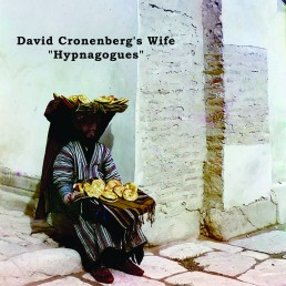David Cronenberg's Wife ‎– Hypnagogues